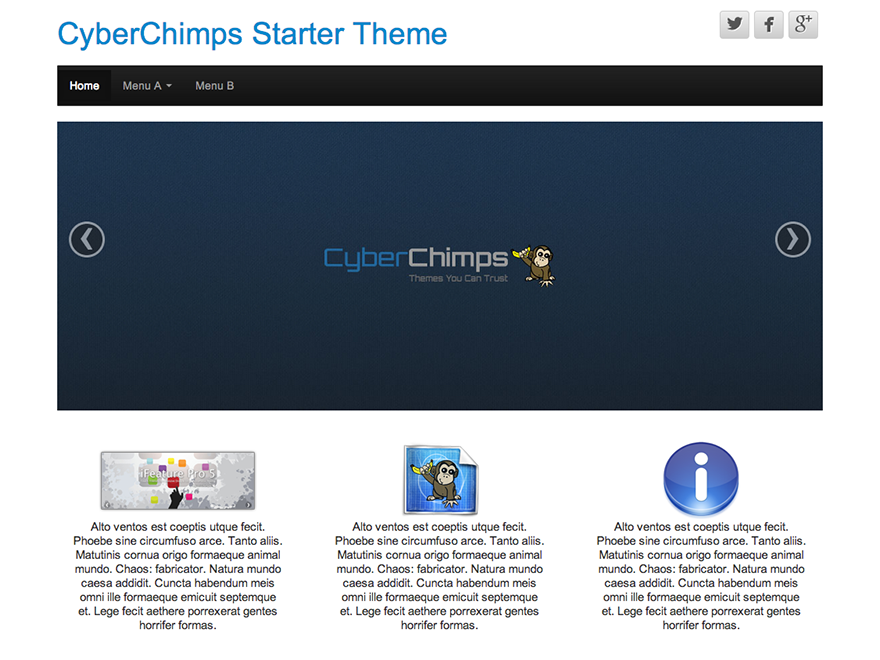 Cyberchimps Theme WordPress