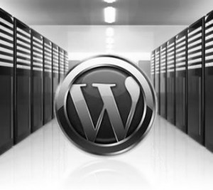 Eleccion de hosting wordpress